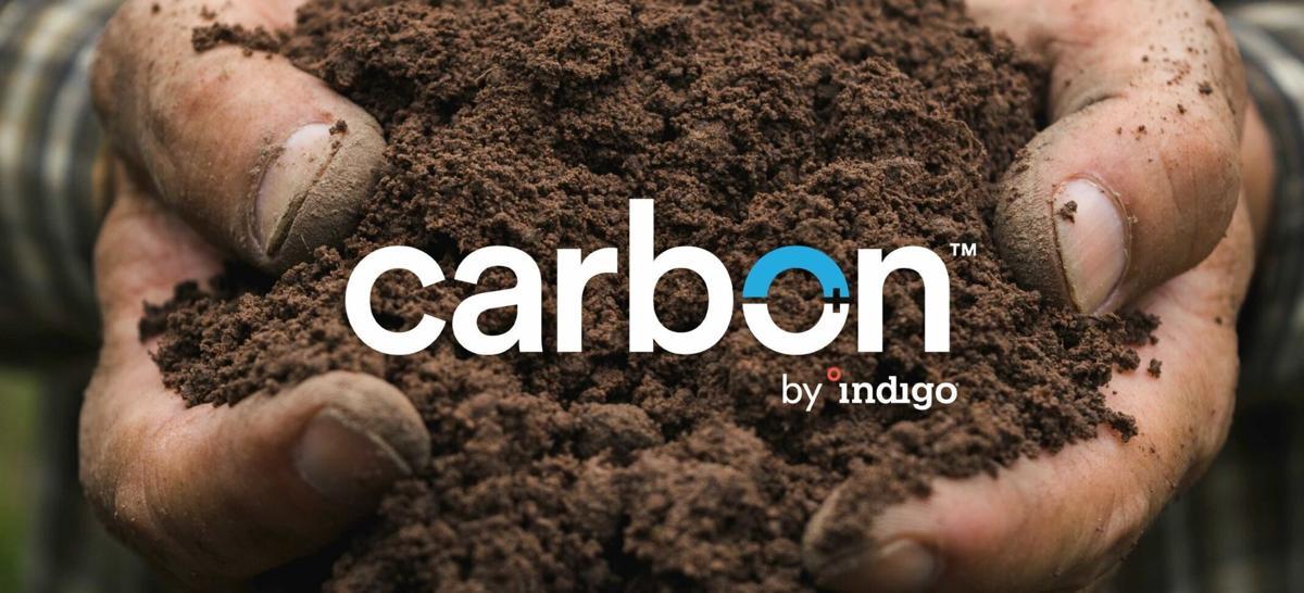 Indigo Ag presents new identity for its industry leading carbon farming program: Carbon by Indigo    Status